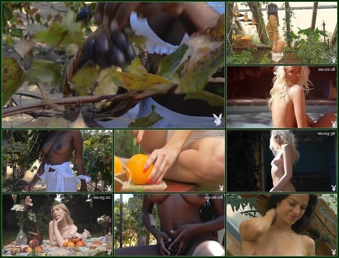 Playboy Plus – Fruits Of Summer